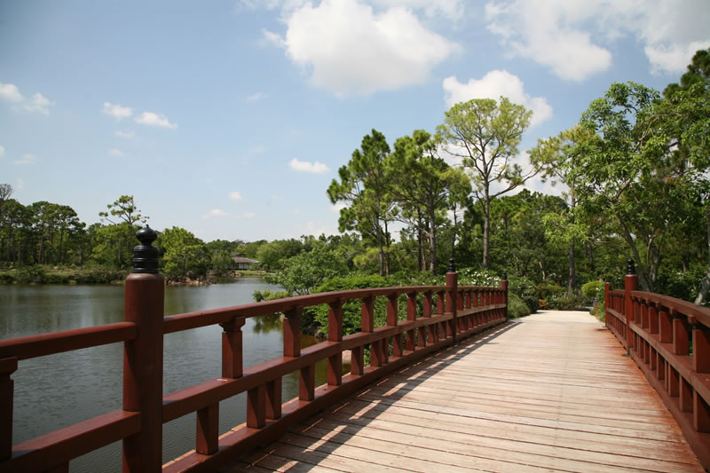 Woodruff Bridge at Morikami