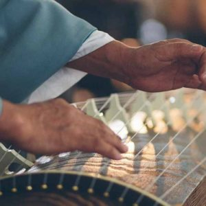 fingers on koto